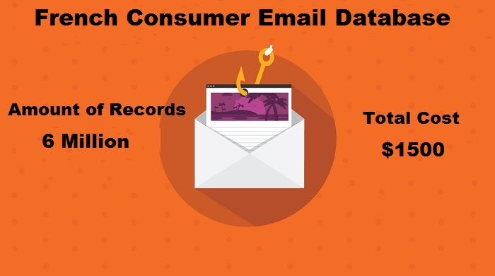 French Consumer Email Database