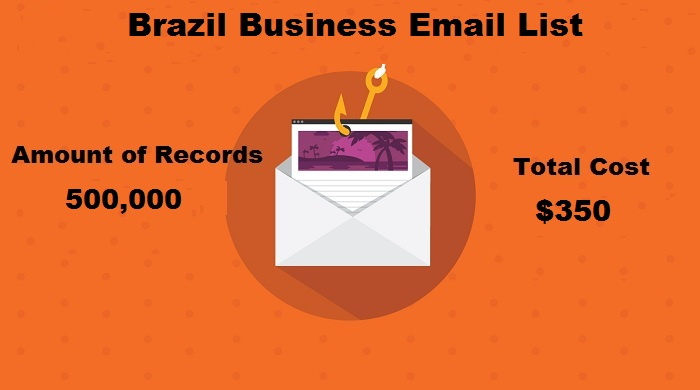 Brazil Business Email List